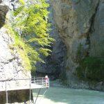 Marbachwanderung 2006: