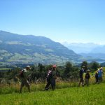 marbachwanderung-2011